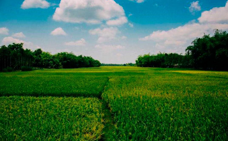 Maatalouden päästöjä vähennettävä
